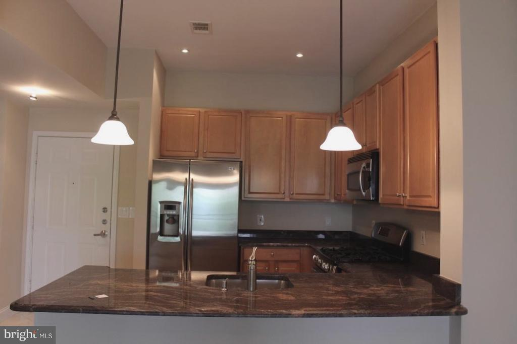 Kitchen - 12001 MARKET ST #446, RESTON