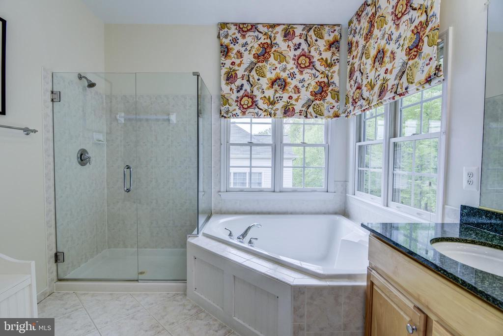 Frameless shower & upgraded faucets - 7428 SPRING SUMMIT RD, SPRINGFIELD