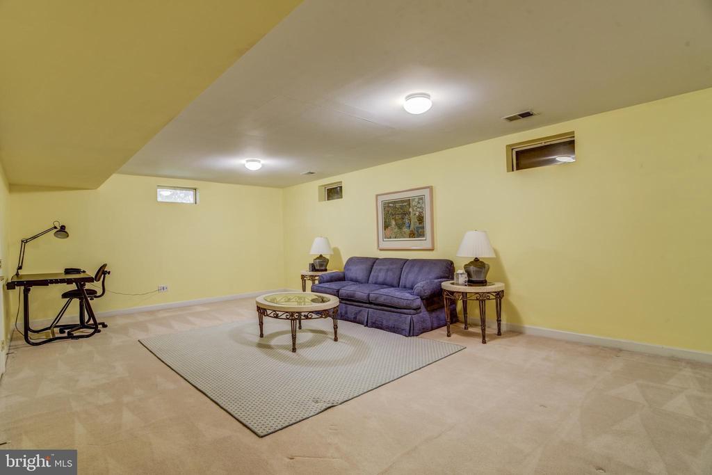 Huge lower level recreation room - 7428 SPRING SUMMIT RD, SPRINGFIELD