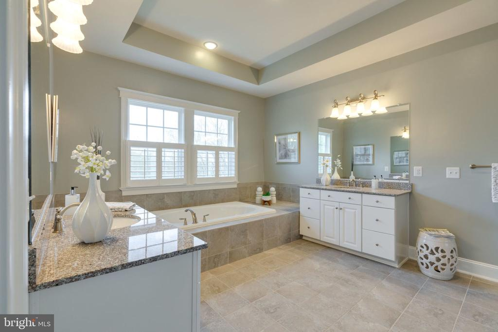 Enter your spa-like bathroom. - 17123 BELLE ISLE DR, DUMFRIES