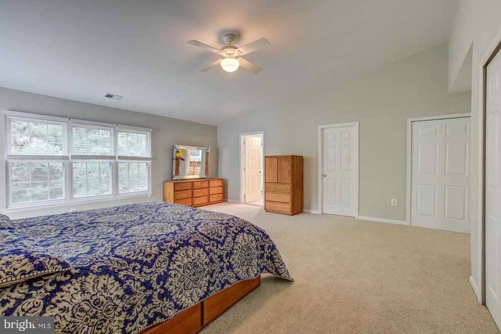 Master bedroom back to woods - 5429 CASTLE BAR LN, ALEXANDRIA