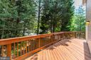 Freshly stained deck - 5429 CASTLE BAR LN, ALEXANDRIA