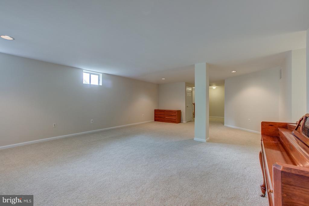 Large finished space! - 5429 CASTLE BAR LN, ALEXANDRIA