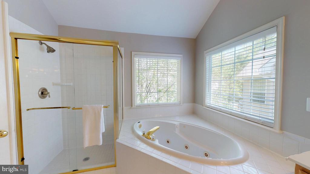 Whirlpool Tub And Separate Shower - 47576 SAULTY DR, POTOMAC FALLS