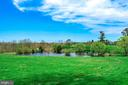 View of the pond from the back of the home - 40041 HEDGELAND LN, WATERFORD