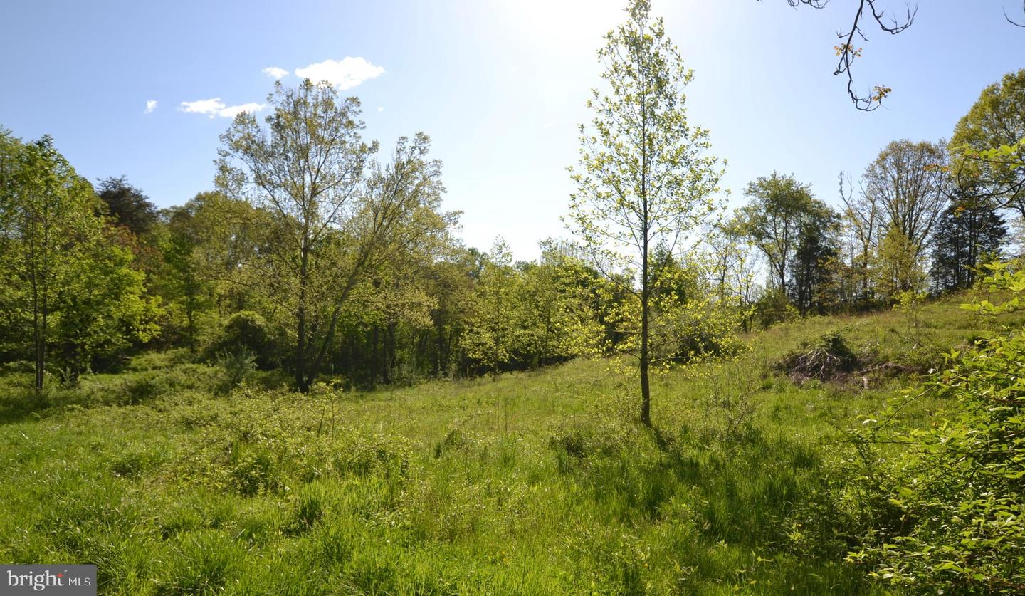 Land for Sale at Jeffersonton, Virginia 22724 United States