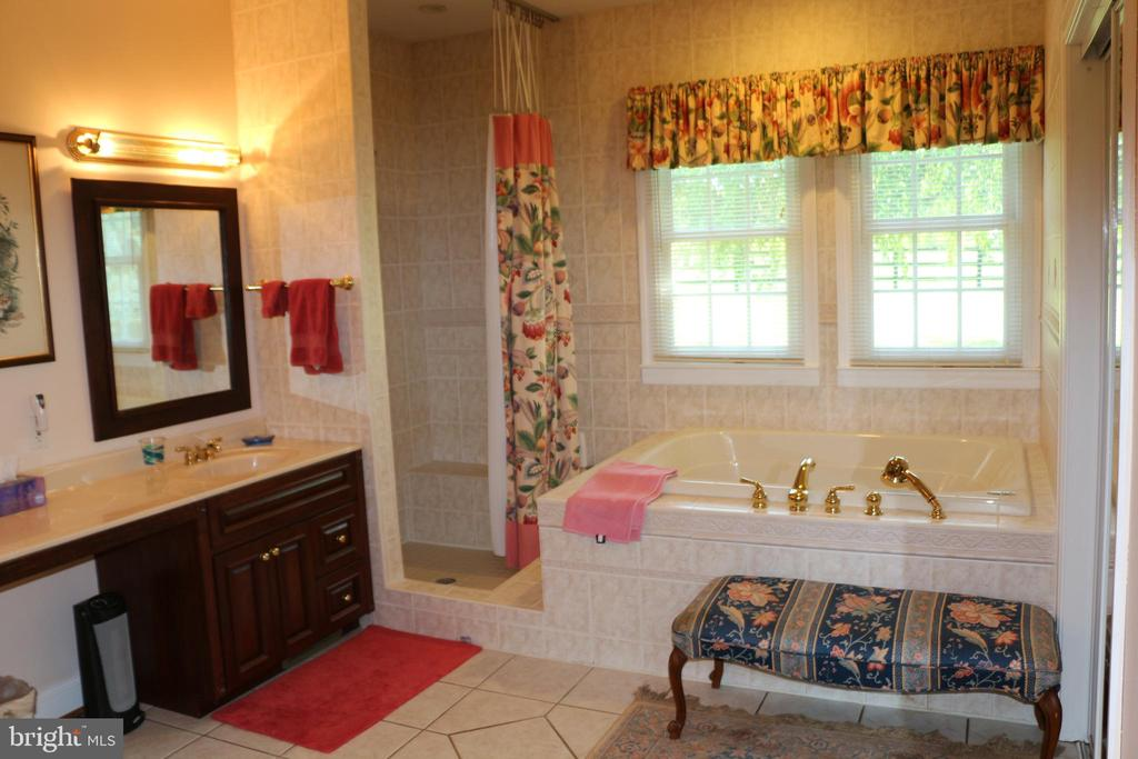 Huge master bath - 18561 YELLOW SCHOOLHOUSE RD, ROUND HILL