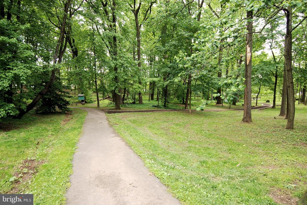 Easy access to plenty of parks and Custis Trail. - 3800 LEE HWY #301, ARLINGTON