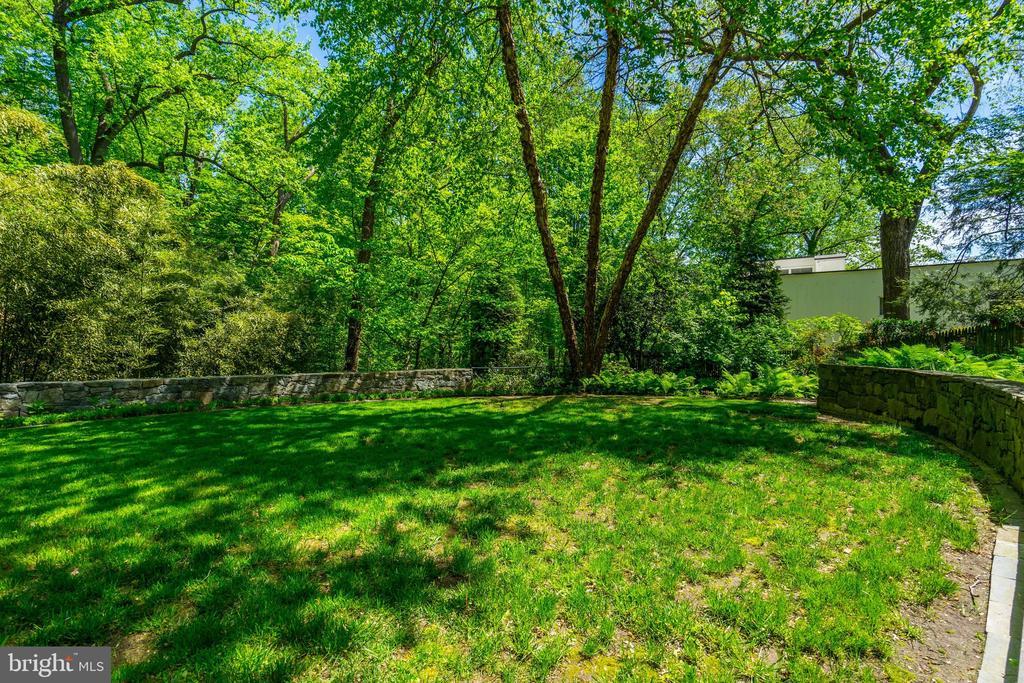 Backyard - 4101 LINNEAN AVE NW, WASHINGTON