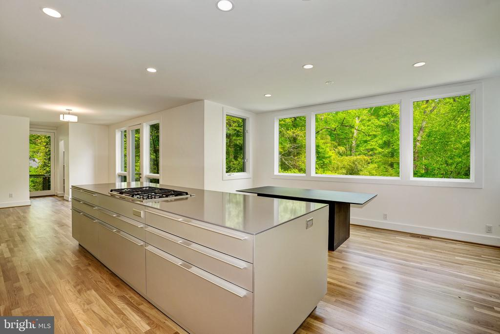 NEW Bolthaup kitchen - 4101 LINNEAN AVE NW, WASHINGTON