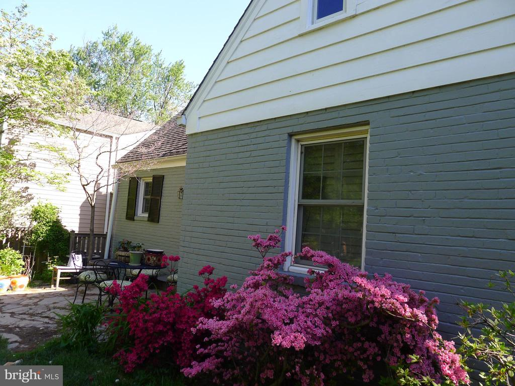 Backyard Flowers - 876 N KENSINGTON ST, ARLINGTON