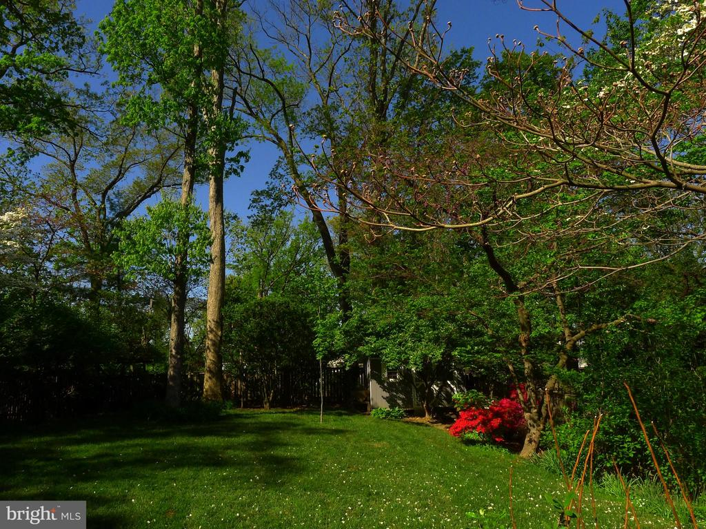 Large open and flat Backyard - 876 N KENSINGTON ST, ARLINGTON