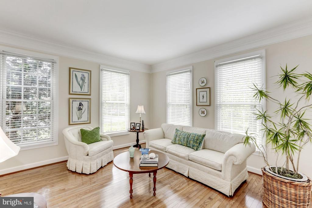 Living Room - 11696 CARSON OVERLOOK CT, HERNDON