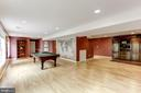 Lower Level Recreation Room - 11696 CARSON OVERLOOK CT, HERNDON