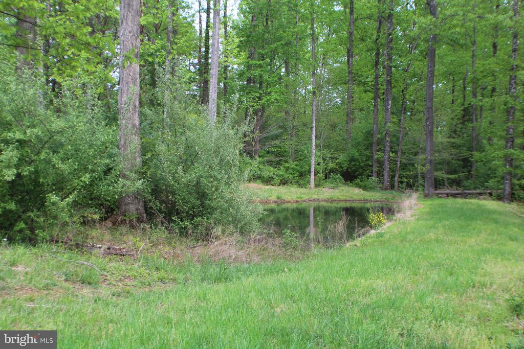 Pond View - 20970 STEPTOE HILL RD, MIDDLEBURG
