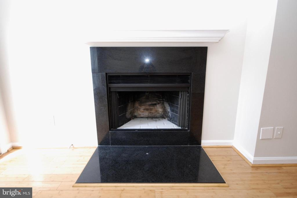Cozy up to your wood burning fireplace next winter - 3176 SUMMIT SQUARE DR #4-B7, OAKTON