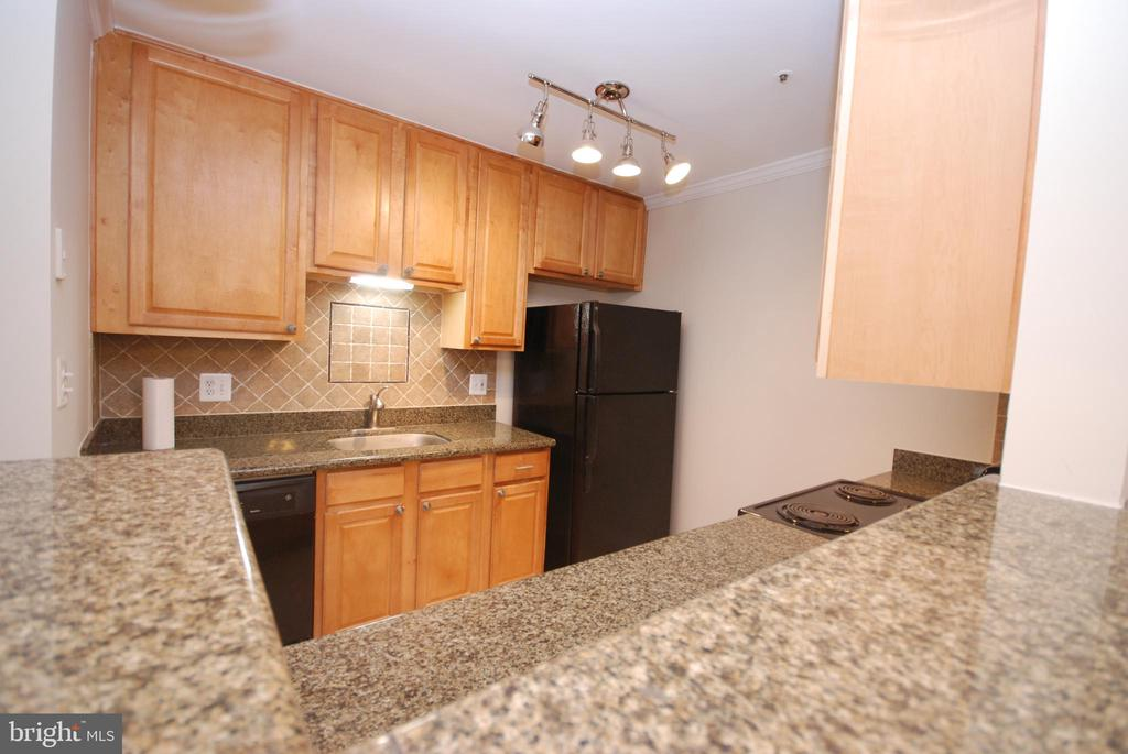You have an amazing amount of countertop space - 3176 SUMMIT SQUARE DR #4-B7, OAKTON