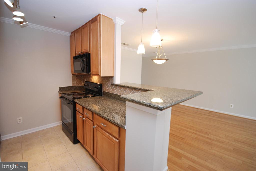 A built in microwave- more countertop area! - 3176 SUMMIT SQUARE DR #4-B7, OAKTON