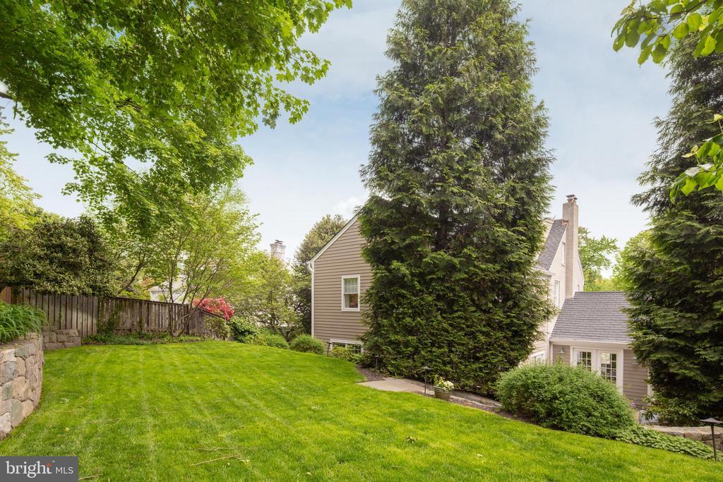 Grassy level yard - 3216 N ABINGDON ST, ARLINGTON