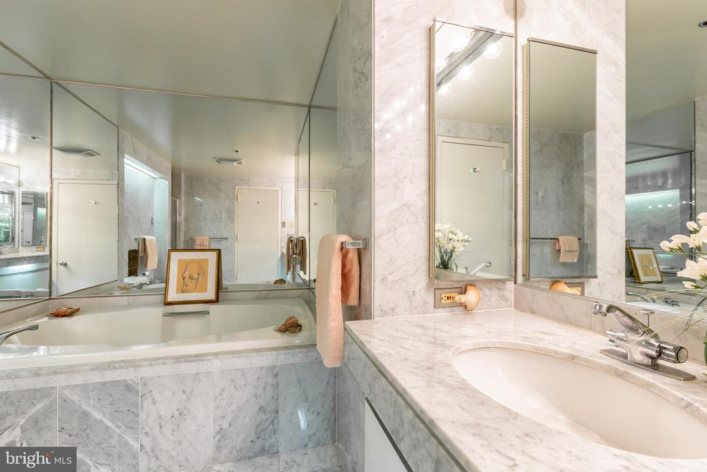 Soaking tub - 1200 CRYSTAL DRIVE #1413-1414, ARLINGTON