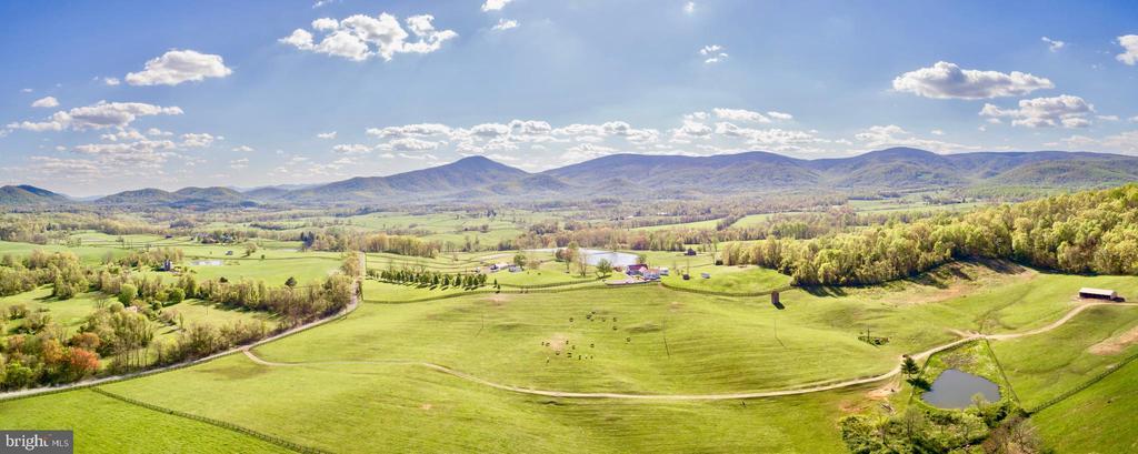 Fruitful Pastures - 4 WINDSOR LODGE LN, FLINT HILL