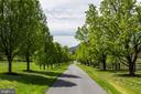 Tree Lined Drive - 4 WINDSOR LODGE LN, FLINT HILL