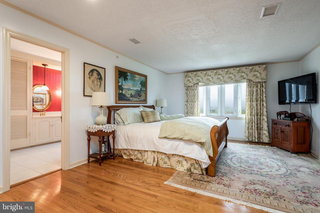 Second Floor Master Bedroom Suite - 4 WINDSOR LODGE LN, FLINT HILL
