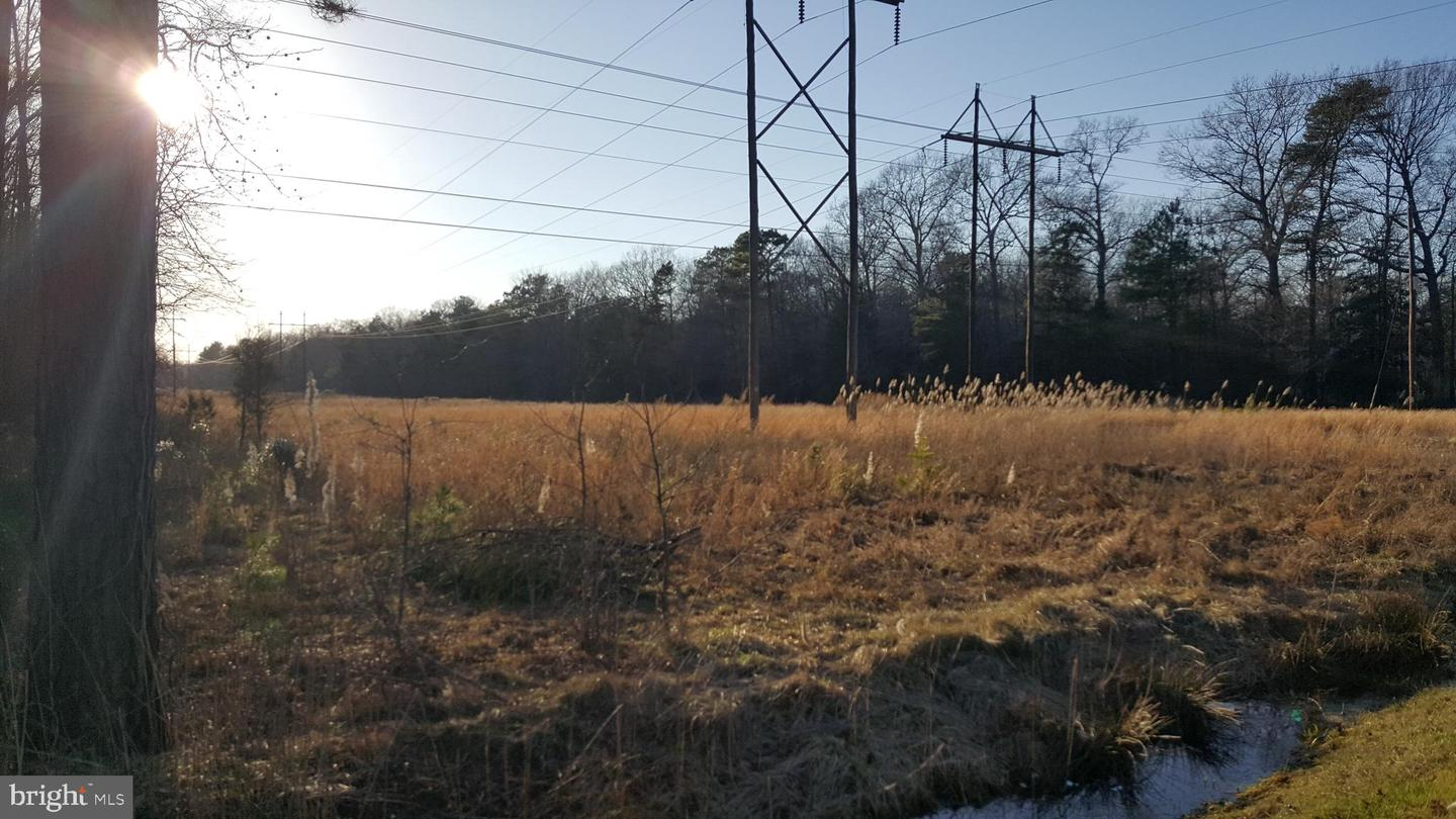 Additional photo for property listing at  Dagsboro, Delaware 19939 États-Unis