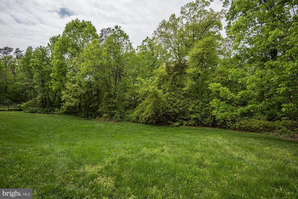 Backs to trees for privacy - 6412 NOBLE ROCK CT, CLIFTON