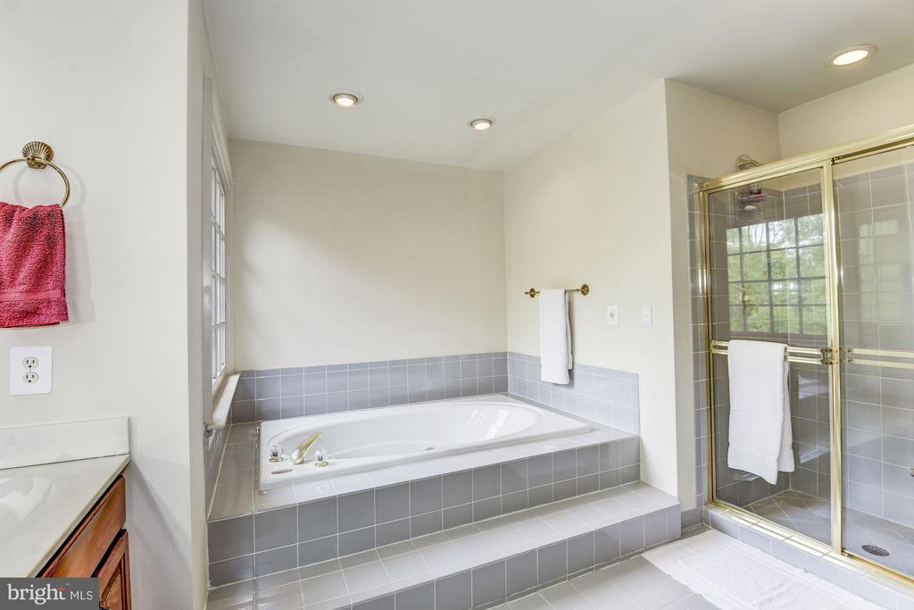 Master bath separate tub and shower - 6412 NOBLE ROCK CT, CLIFTON