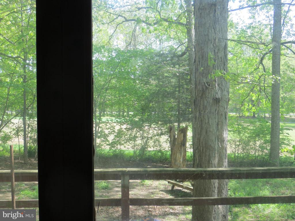 window wall view of the outdoors - 537 MT PLEASANT DR, LOCUST GROVE