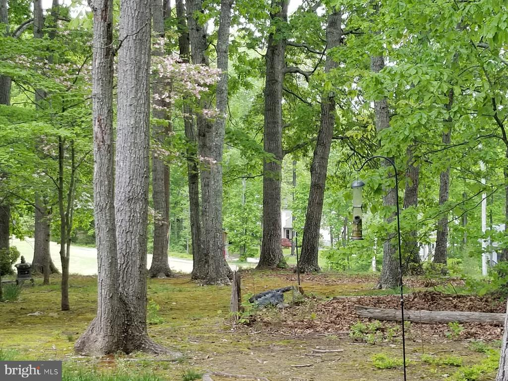 Backyard looking toward golf course - 138 EAGLE CT, LOCUST GROVE