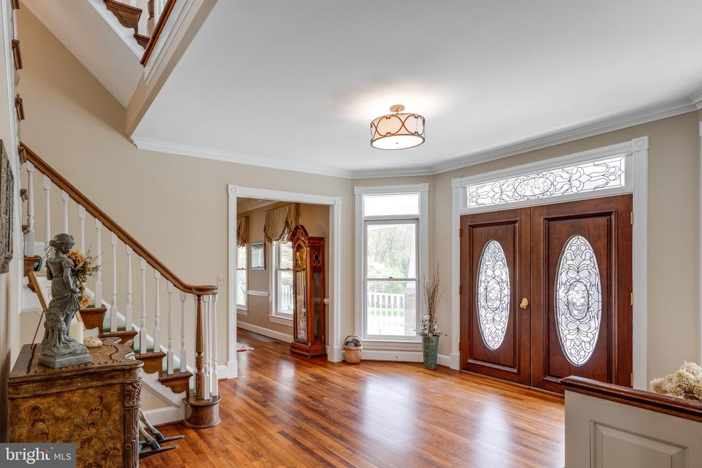 Sun-drenched Foyer with Leaded Glass Doors. - 10114 LAWYERS RD, VIENNA
