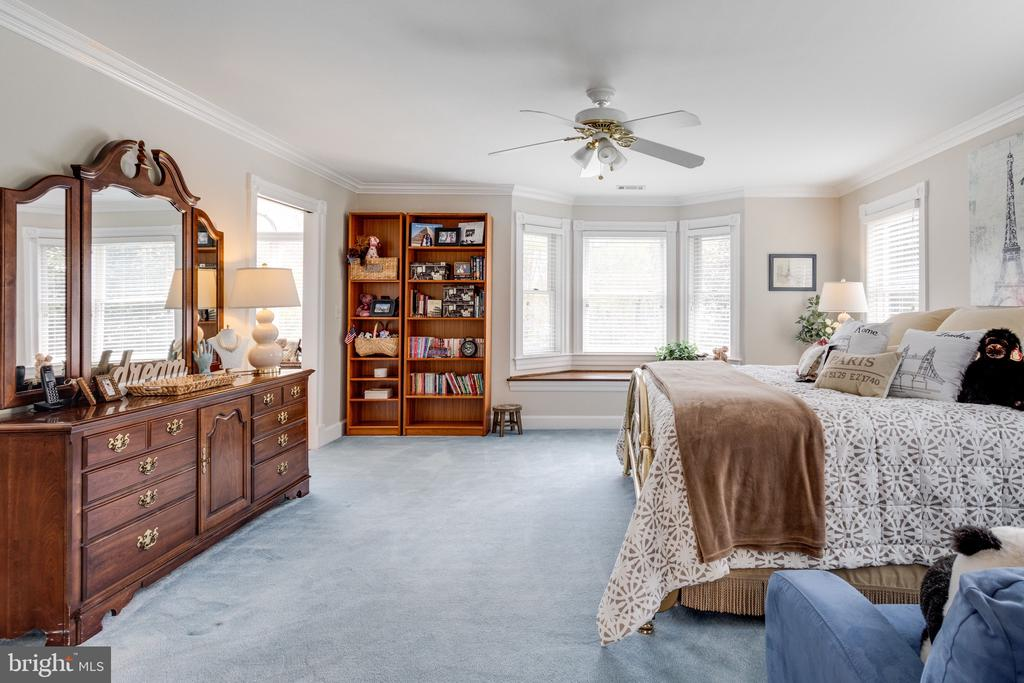 Charming 2nd Master Suite with Window Seat. - 10114 LAWYERS RD, VIENNA