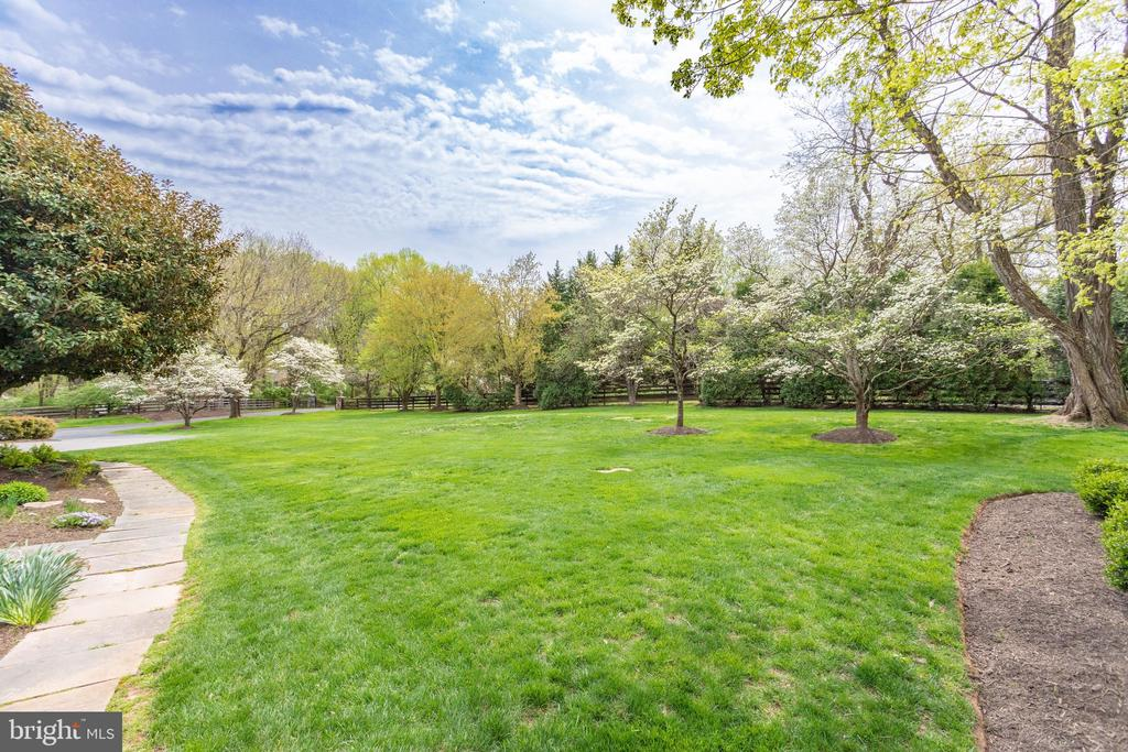 Lush Lawn & an Abundance of Flowering Trees - 10114 LAWYERS RD, VIENNA
