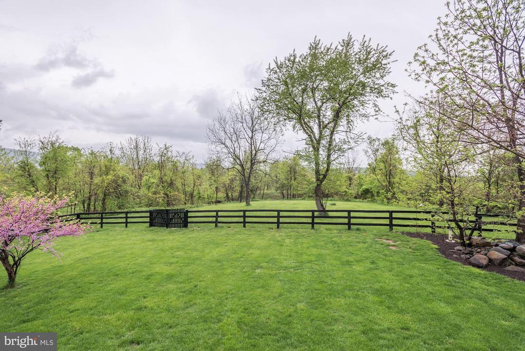Large Fenced Rear Yard - 35054 MCKNIGHT CT, ROUND HILL