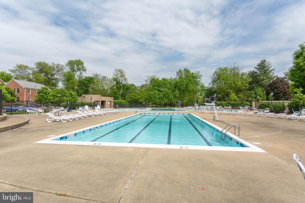 Community Pool - 6616 E WAKEFIELD DR #A1, ALEXANDRIA