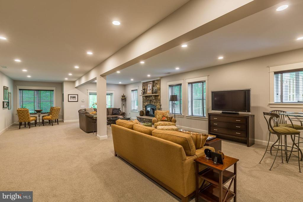 Bright and airy walkout lower level. - 1207 ROSS DR SW, VIENNA