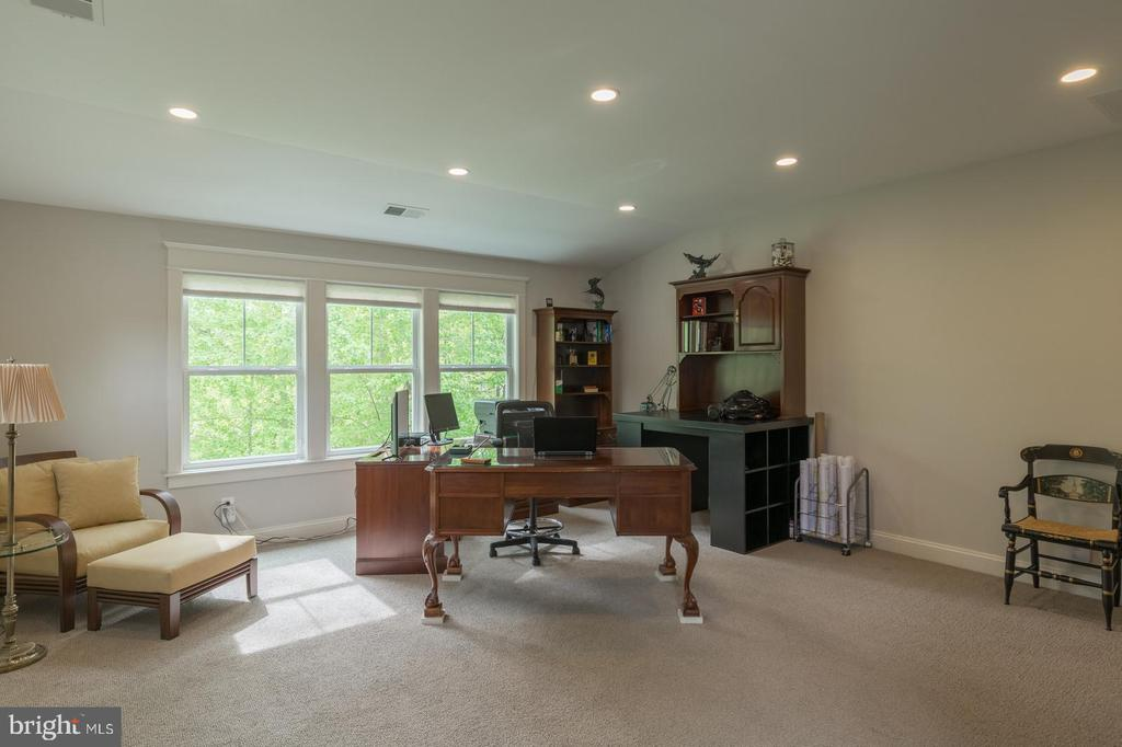 Office/Au pair/In laws - take your pick! Full bath - 1207 ROSS DR SW, VIENNA