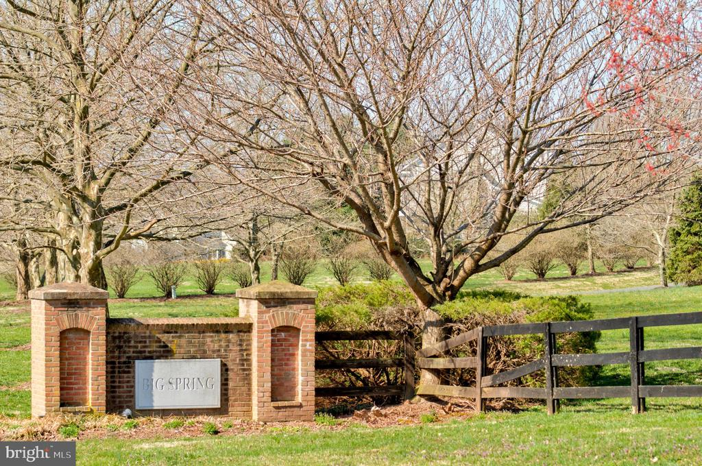 Big Spring is a private community close to Town - 17160 SPRING CREEK LN, LEESBURG