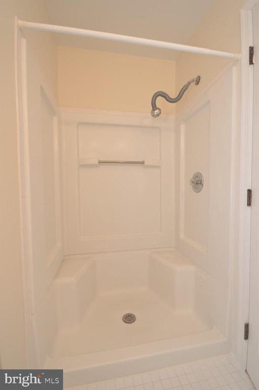 Master Bath Shower - 3 WORTHINGTON CT, STERLING