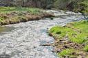 ON LOT! Last natural spring-fed N. VA Trout Stream - 17160 SPRING CREEK LN, LEESBURG