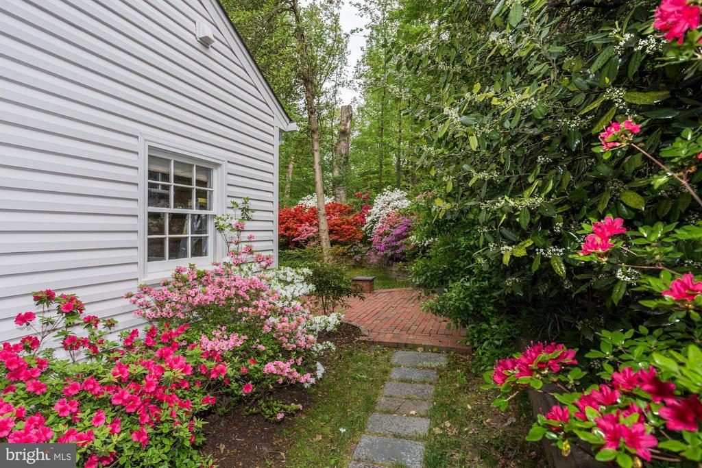 Springtime on Appleton - 8623 APPLETON CT, ANNANDALE