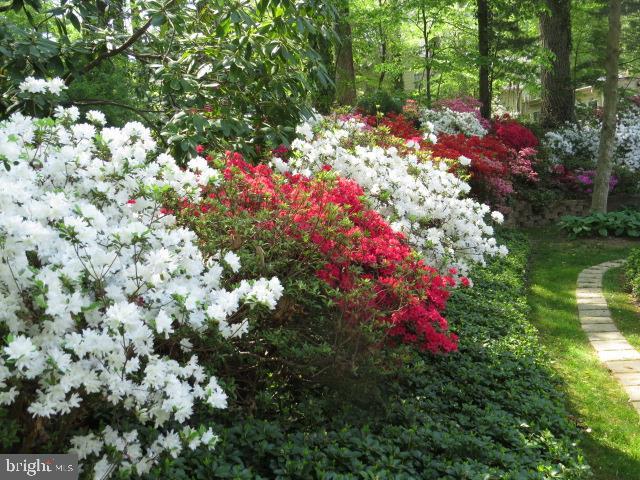Springtime Garden  on Appleton View 3 - 8623 APPLETON CT, ANNANDALE
