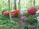Springtime Garden  on Appleton View 4 - 8623 APPLETON CT, ANNANDALE