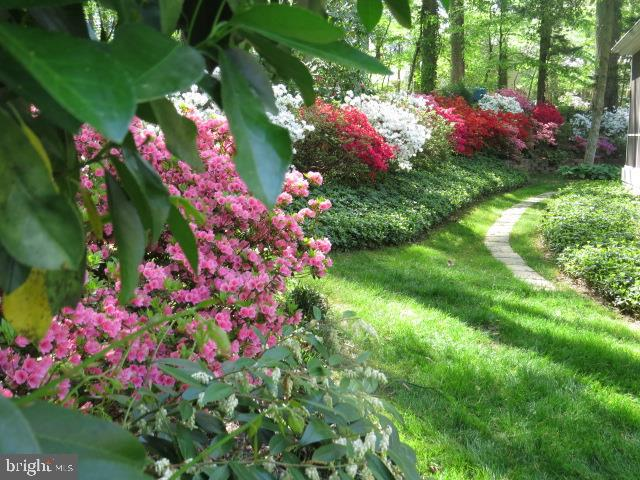 Springtime Garden  on Appleton View 5 - 8623 APPLETON CT, ANNANDALE