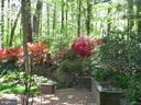 Rear Patio and Gardens View 6 - 8623 APPLETON CT, ANNANDALE