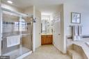 Separate spacious shower - 25647 S VILLAGE DR, CHANTILLY