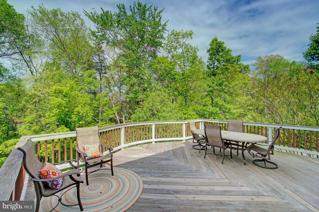 Enjoy Long Evenings on this Large Deck - 42834 MEANDER CROSSING CT, BROADLANDS