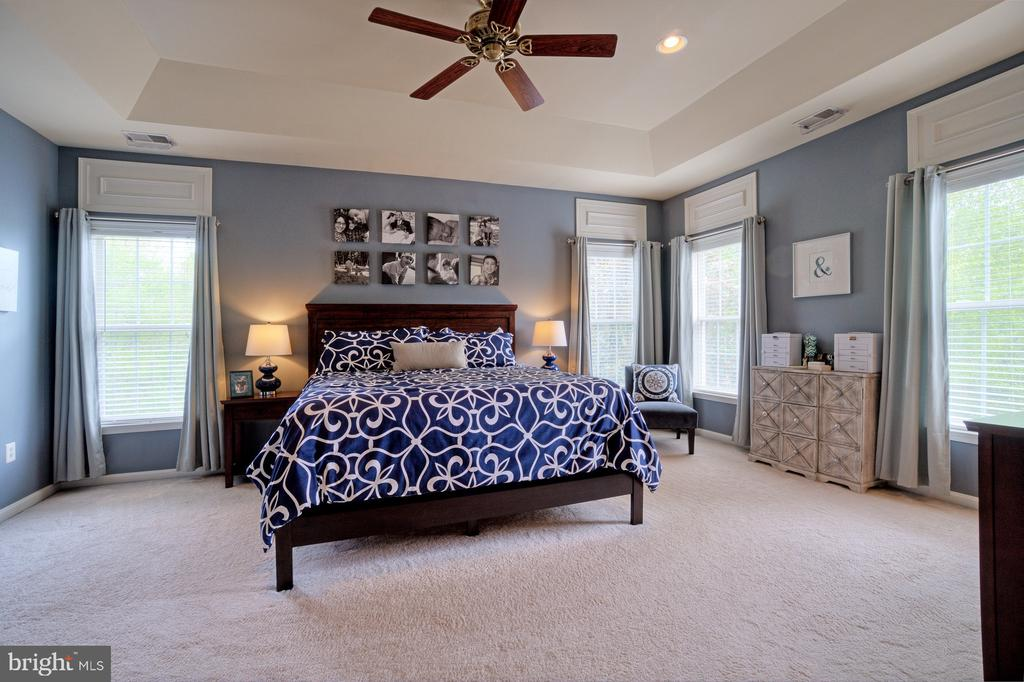 Gorgeous Master Suite - 42834 MEANDER CROSSING CT, BROADLANDS